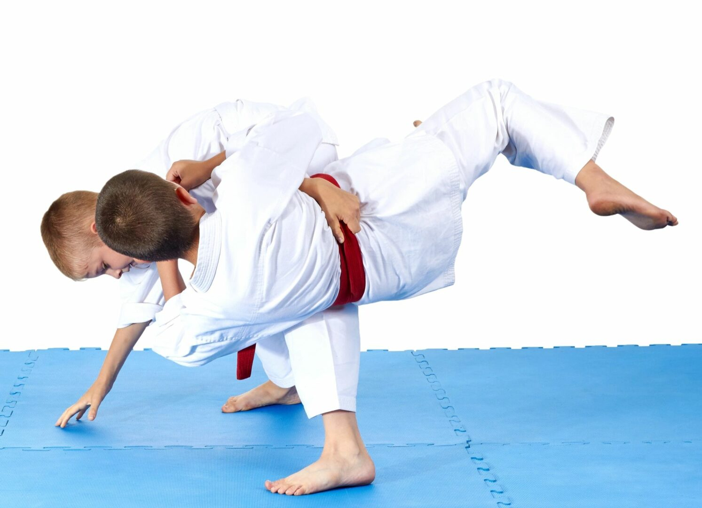 Japan International Karate Center